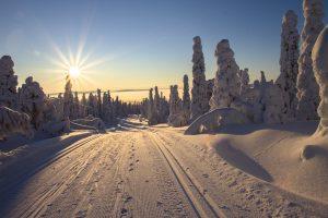 Low-Cost Weekend Activities: Winter Edition
