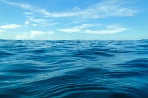 CWCU-ocean-waves-with-blue-sky-300x199 About Us