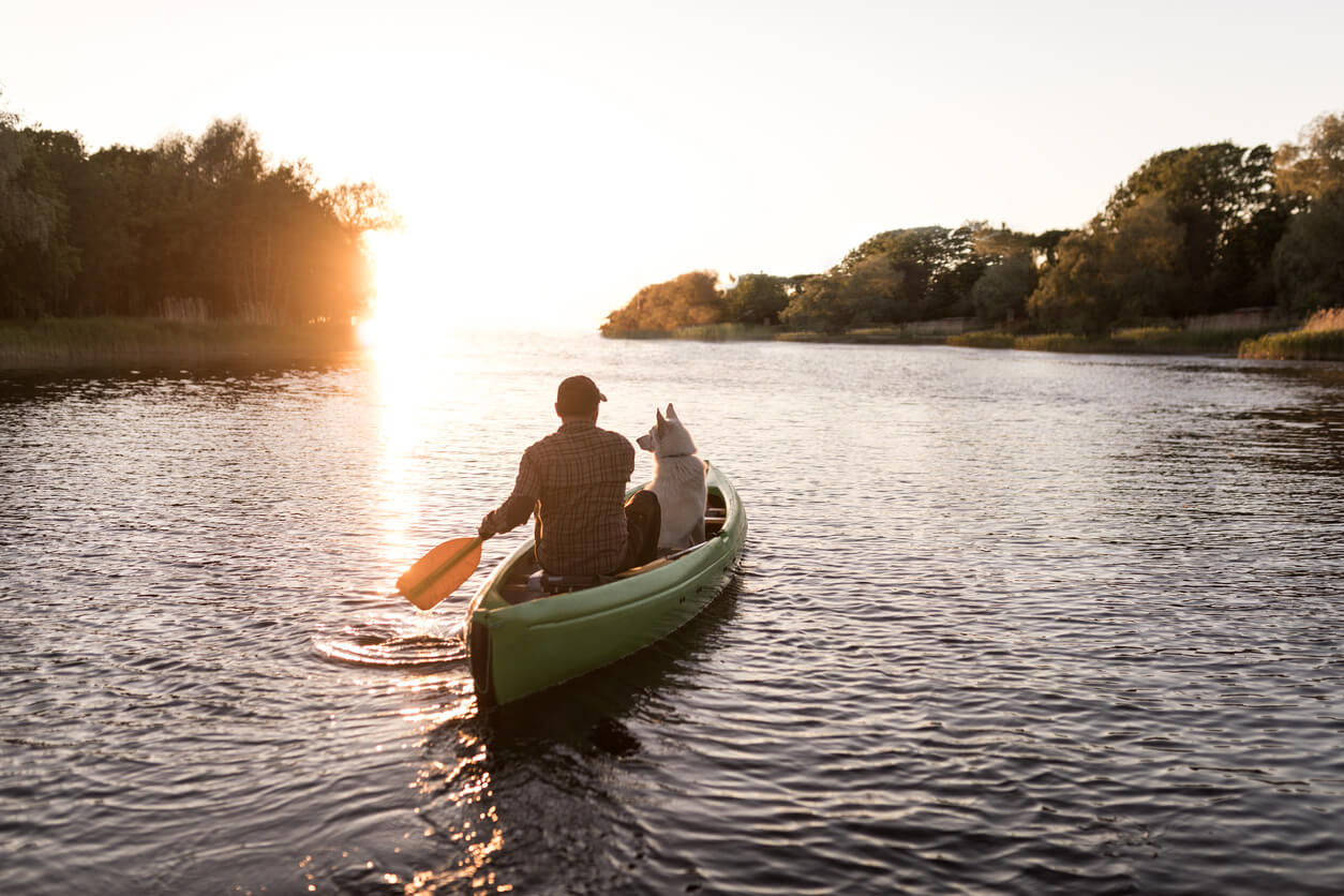 Man and Dog in a Canoe Rowing in a Lake at Sunset